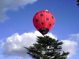 La montgolfière coccinelle s'en va