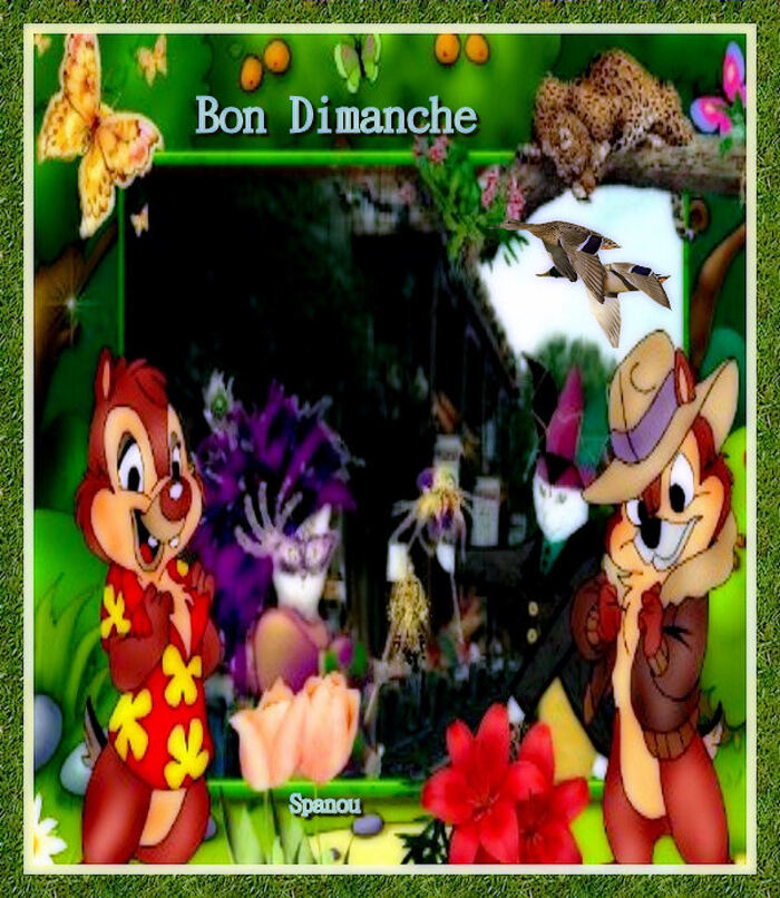Bon Dimanche (4)