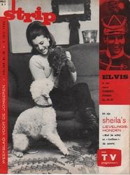 SHEILA & MIEL...