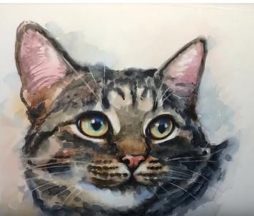 Dessin et peinture - viéo 25 : Comment peindre un chaton et un adulte à l'aquarelle ? Tutoriel.