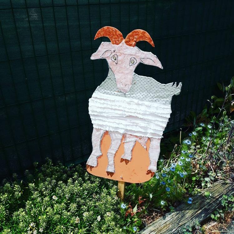 La fête de la chèvre !