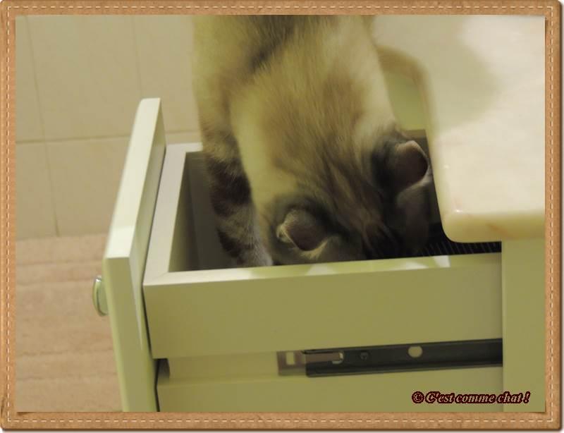 Ahhhh !!! Un tiroir ouvert !