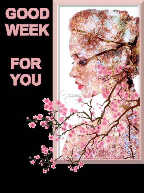 Boa Semana - 16 -