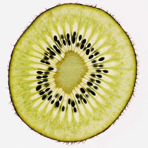 Kiwi tranche fruit d'automne