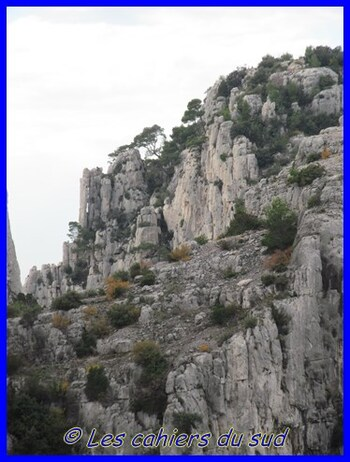 Calanques , Port pin et En Vau