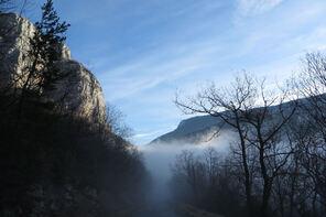 13 décembre - Tour des rochers de Presle