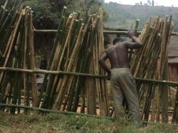 l Afrique dans la peau, l avancement des travaux des heros!