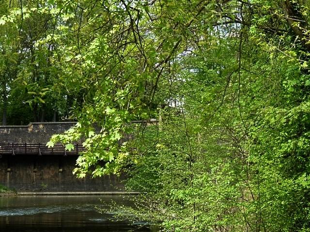 Metz ville verte - mp1357 26 01 2011 4