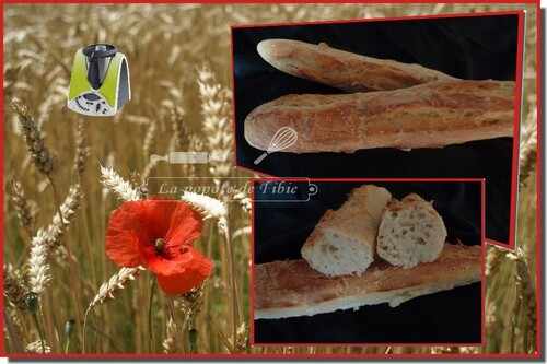 Baguettes (thermomix)