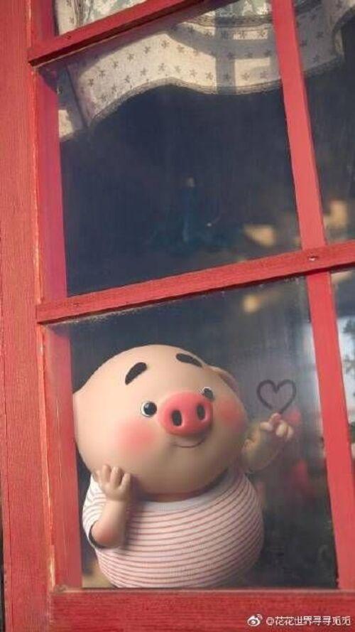 Petits cochons (suite)