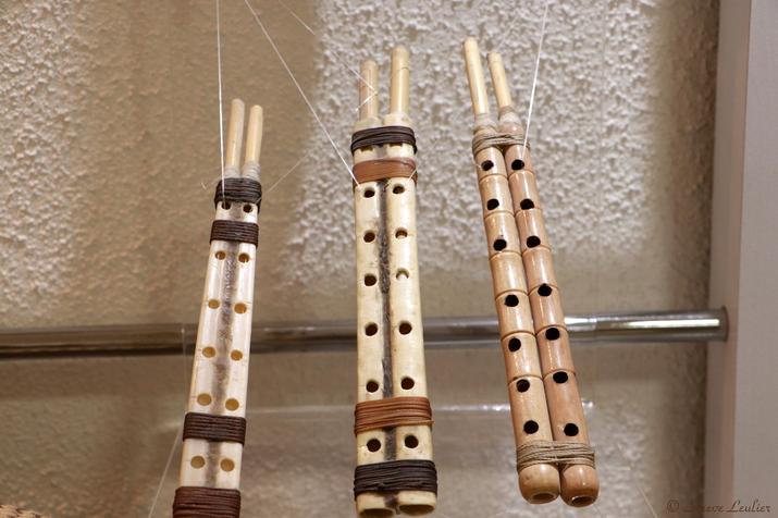Musée de la musique : les instruments régionaux, Qoshmeh, Ispahan