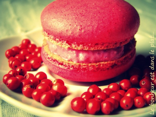 Macarons ch&egrave;vre, betterave et baies roses de Madagascar.
