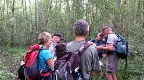 Brevet Collard Dosches 7 octobre 2018 à partir de 8h30     10 15 20 25 km randonnée pédestre