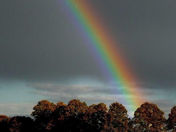 16.10.2012.ar--4-.JPG