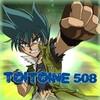 Toitoine508