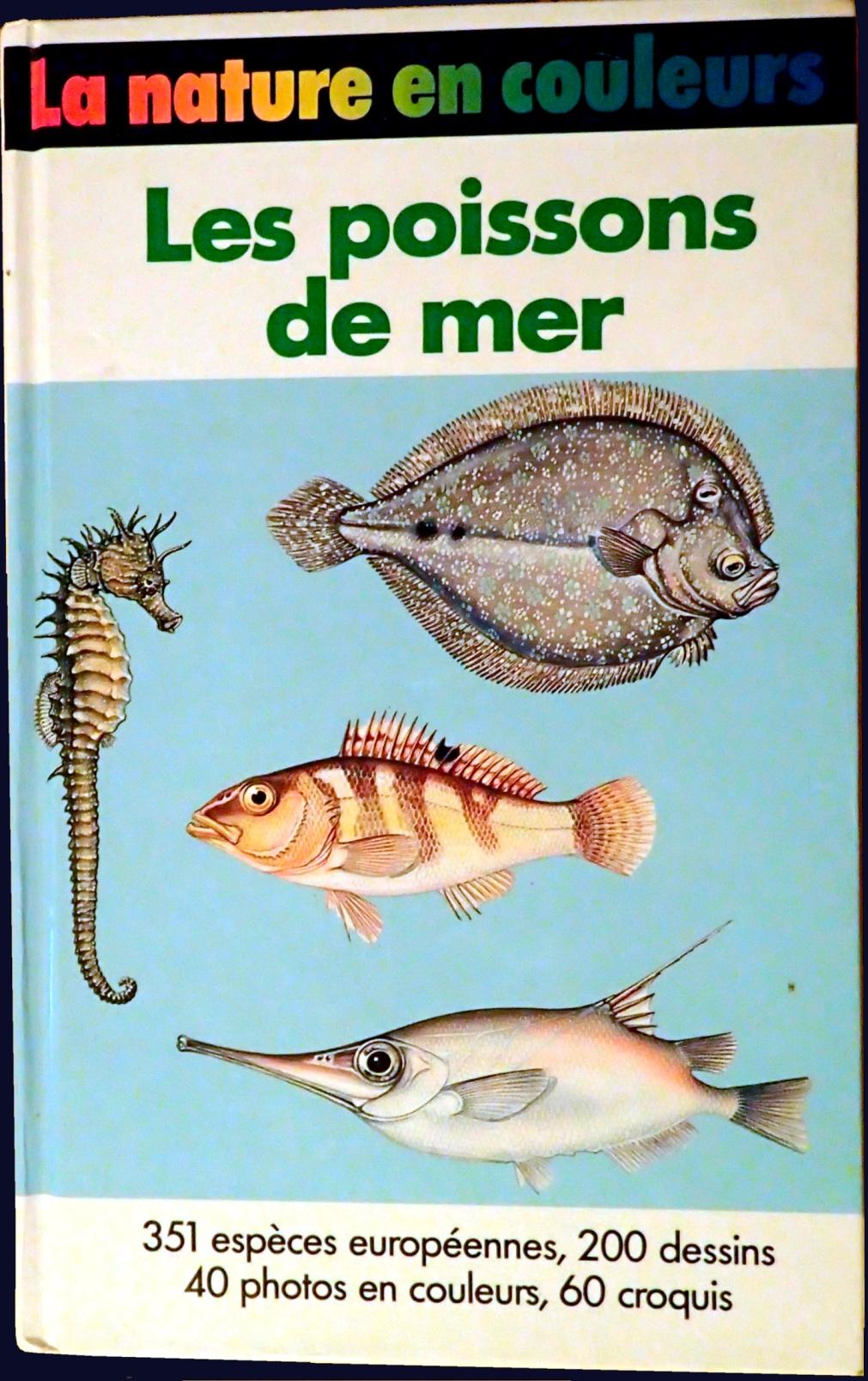 les poissons de mer la nature en couleur