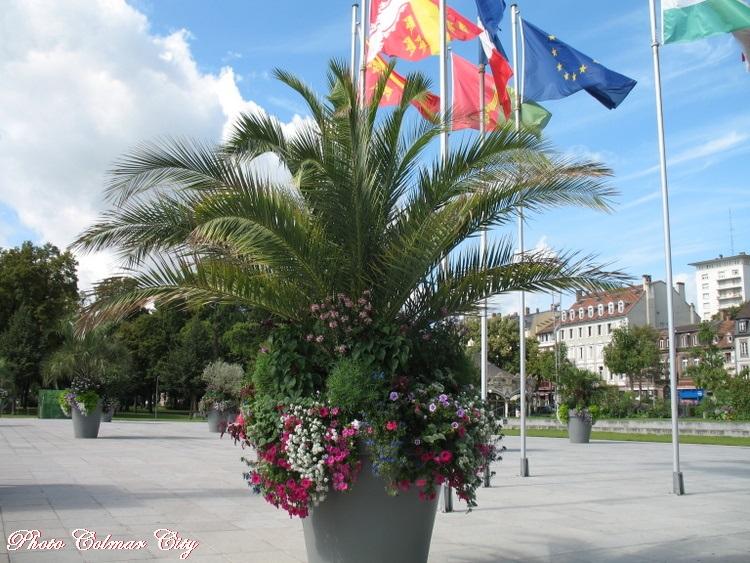 Colmar : La Place Rapp en été 2/2
