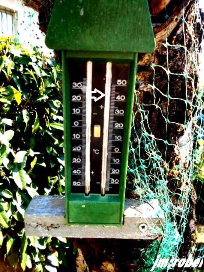 La canicule d'un jour 43°c