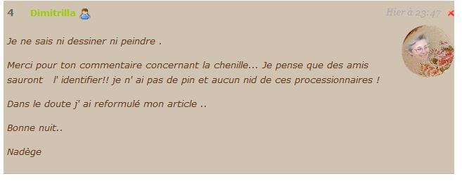 commentaire Nadège