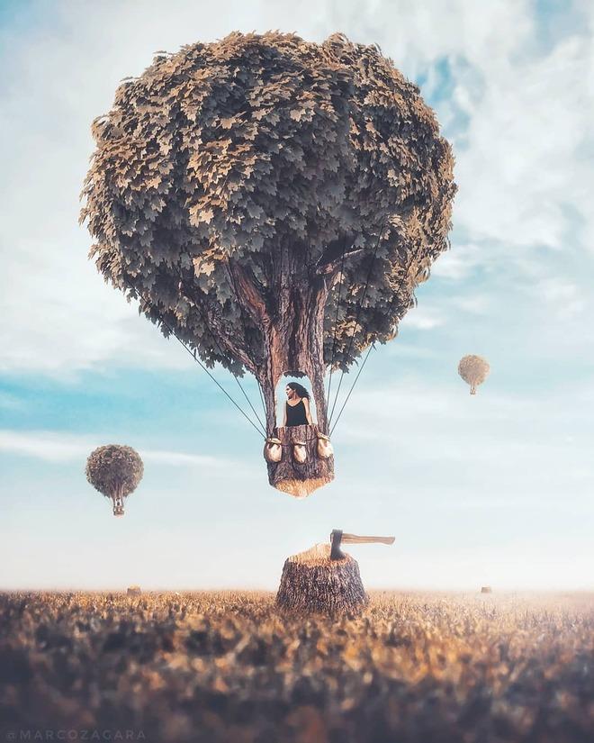 photo manipulation tree