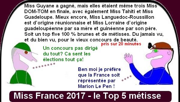 Que pense-t-on de l'élection Miss France sur le net?