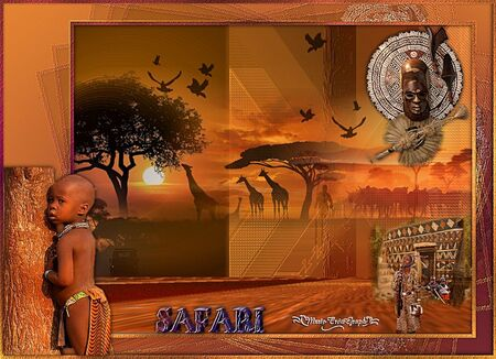 Safari 2ème version