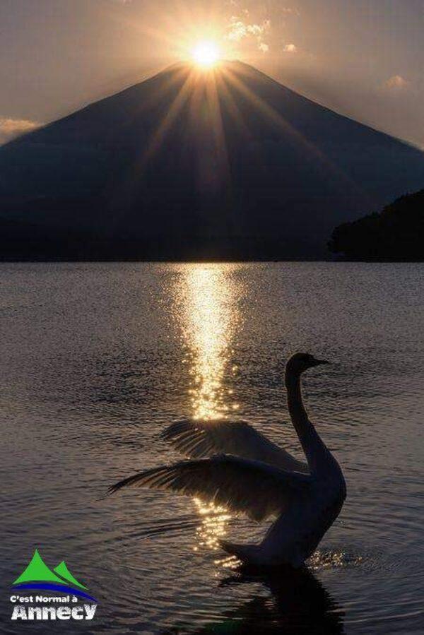 Magnifique photo du Lac d'Annecy