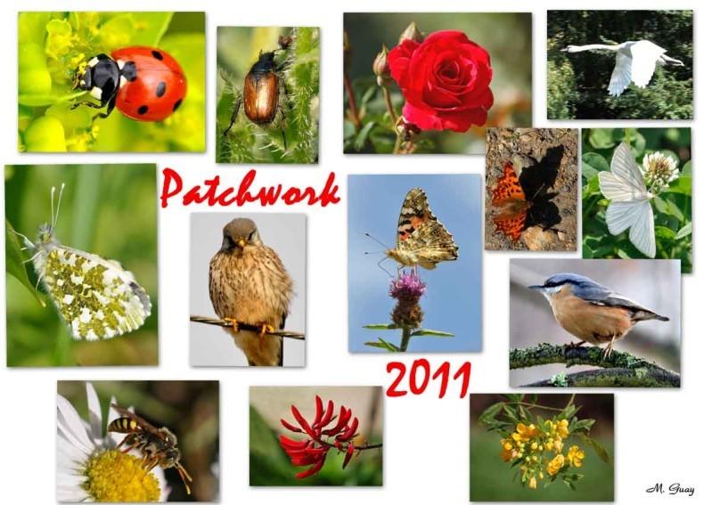 patchwork-2011--2_modifie-r.jpg