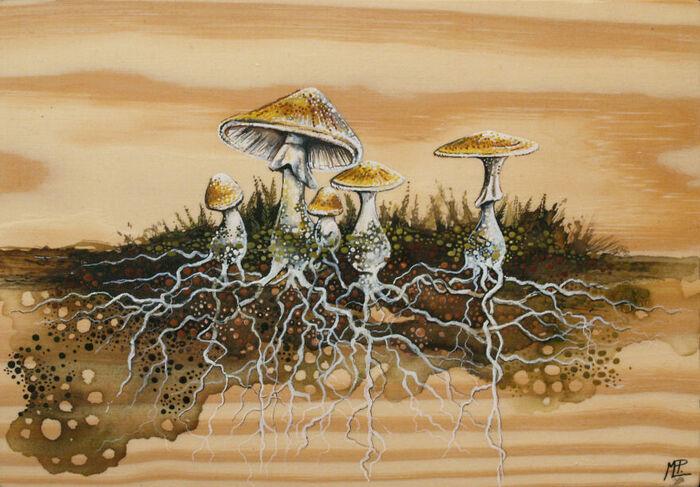 Je crée des illustrations inspirées de la nature fantastique