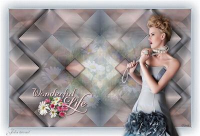 Wonderful Life képek