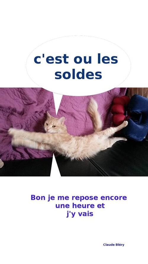 Chat tombe bien