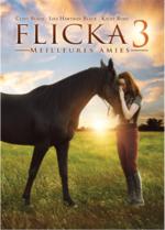 Les films de chevaux que je vous conseille de voir.