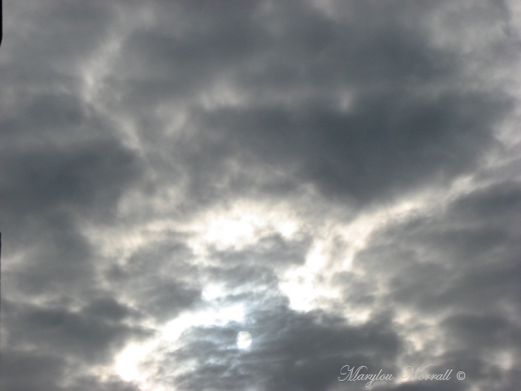Ciel d'Alsace 337