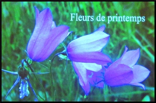 """A Aignay le Duc, les conférences de Madame Poillotte et la présentation de l'ouvrage """"au fil du Brevon"""" ont eu un gand succès !"""