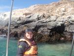 J 215, 10 avril : Réserve Naturelle des Pingouins de Humboldt