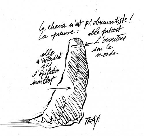 Charia, niqab, épilation maillot, islamistes,Tunisie