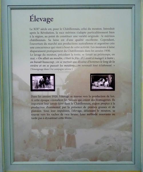 Un cabinet de curiosités a vu le jour au Musée du Pays Châtillonnais-Trésor de Vix....