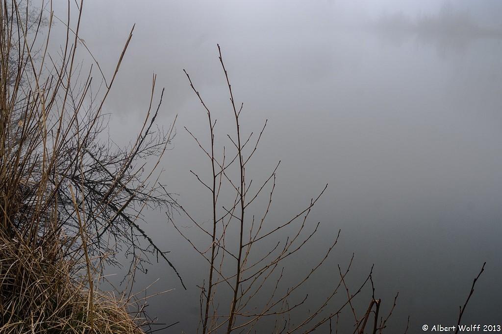 Et tant de brume sur l'étang.