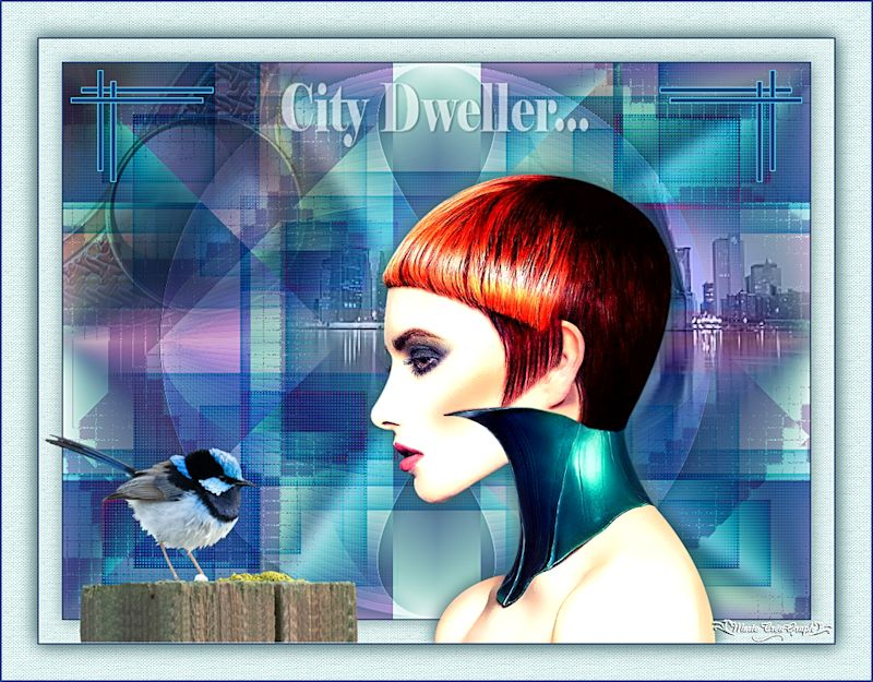 City Dweller