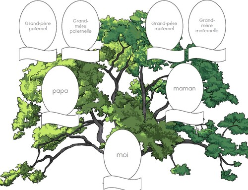 1P/2P - L'arbre généalogique (album de famille)