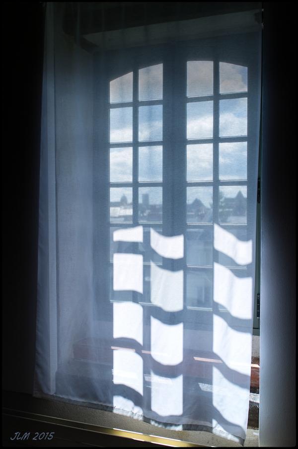Windows (95)