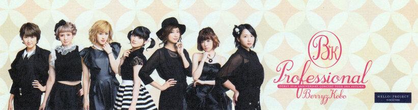 Profils des Berryz Kobo pour la Tournée ~Professional~