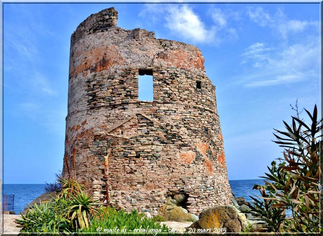 Tour génoise d'Erbalunga - Corse