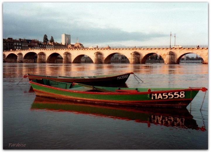 Les barques à Mâcon