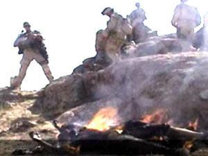 حرق الأفغان