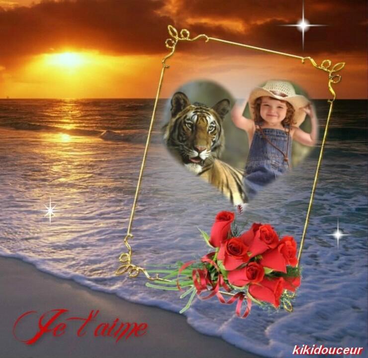 ♥♥Bonjour du mercredi♥♥
