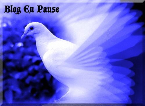 blog en pause2