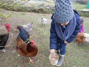 Visite à la ferme des GS