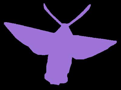 Tubes Sphinx fuciforme