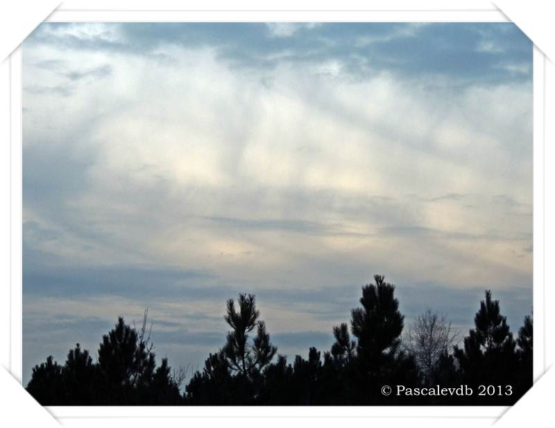 Brumes matinales, levers et couchers de soleil sur Le Barp - 2/2